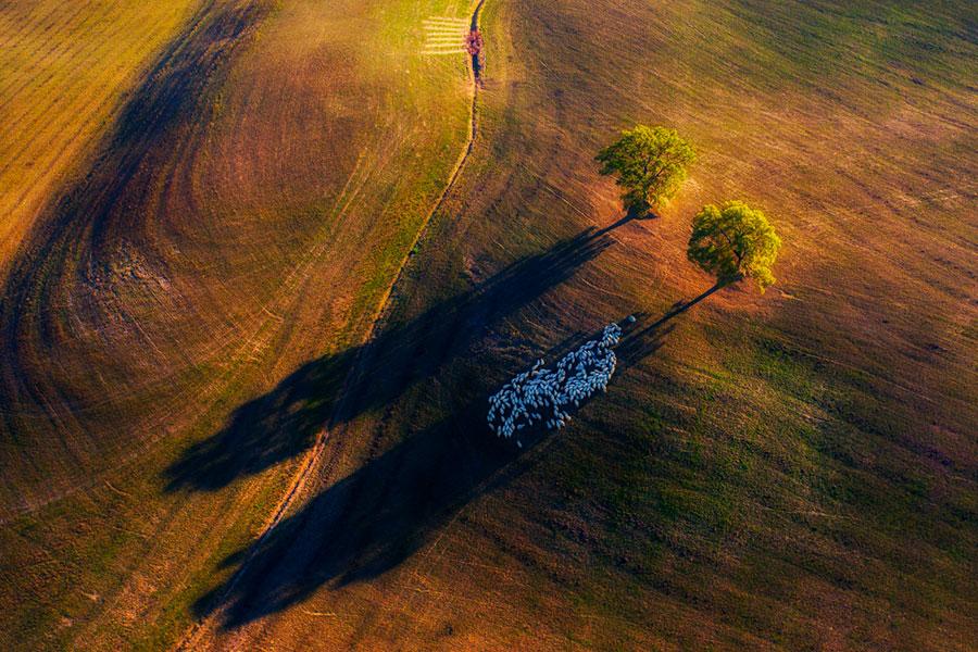 fotografía con dron de naturaleza 3