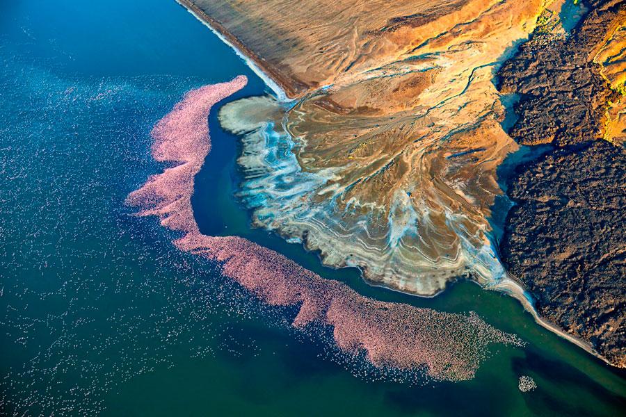 fotografía con dron de naturaleza.